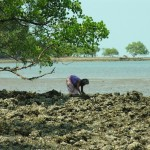 A Moken woman digs for shells on Ko Chang Noi.
