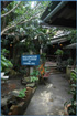 Photo of Mae Hong Son Guesthouse of Chiang Rai