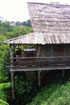 Photo of Tree Top Ecolodge