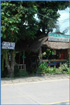 Photo of Green Tree Guest House