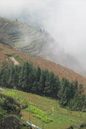 Typical Sapa scenery
