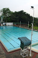 Swimming in KL
